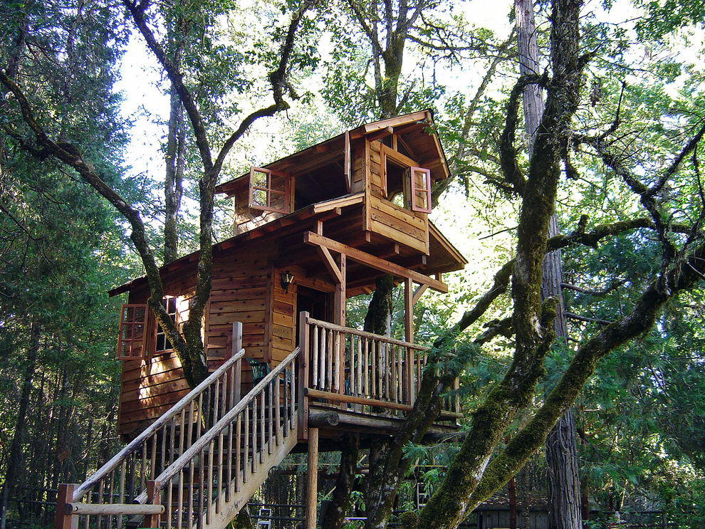 17 Tree Houses For Adults Web Boutiqueweb Boutique